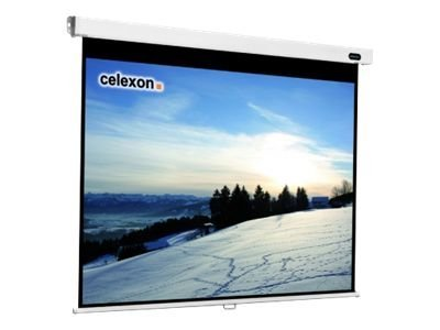 Professional manual Leinwand - 238 cm (94 Zoll)