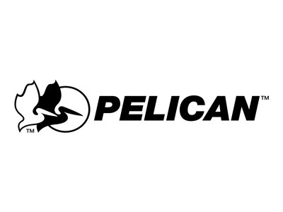 Pelican O-ring for carrying case