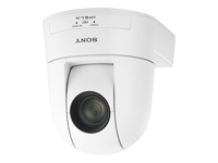Sony IPELA SRG-300SEW - Network surveillance camera - PTZ - colour (Day&Night) - 2.1 MP - 1920 x 1080 - motorized - audio - 3G-SDI - LAN 10/100 - H.264 - DC 10.8 - 13.2 V