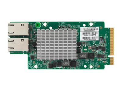Tyan M7059F77A-X540 - network adapter - PCIe 2.0 x8 - 10Gb Ethernet x 2