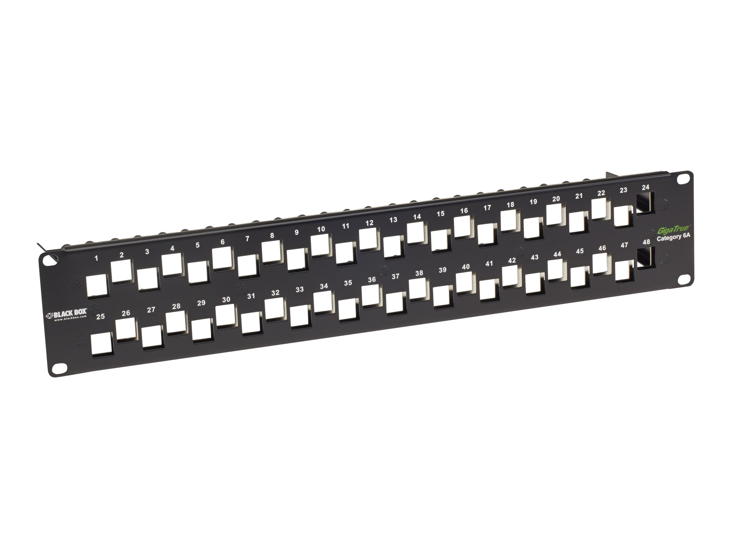 Black Box GigaTrue CAT6A Staggered Blank Patch Panel - patch panel - 2U - 19""