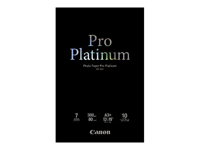 Canon Photo Paper Pro Platinum - 100 x 150 mm - 300 g/m² - 20 Blatt Fotopapier - für PIXMA iP3600, MP240, MP480, MP620, MP980