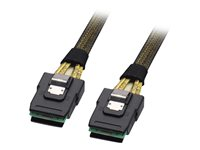 Lindy - SAS internal cable - 4-Lane - 36 pin 4i Mini MultiLane (M) to 36 pin 4i Mini MultiLane (M) - 1 m