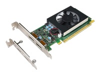 NVIDIA GeForce GT730 - Graphics card - GF GT 730 - 2 GB GDDR5 - PCIe 2.0 x8 low profile - DisplayPort - for ThinkCentre M710e; M710s; M710t; M715s; M715t; M720s; M720t; M910s; M910t; M920s; M920t