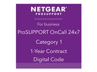 NETGEAR ProSupport OnCall 24x7 Category 1 Technical support phone consulting 1 year 24x7