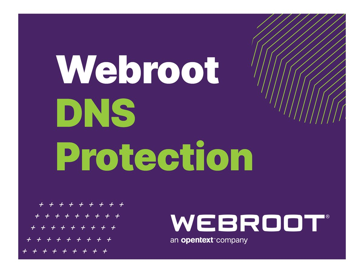 Webroot SecureAnywhere Business - DNS Protection - subscription license renewal (2 years) - 1 PC/Server