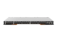 Lenovo Flex System FC5022 16Gb SAN Scalable Switch - Switch - Managed - 20 x 16Gb Fibre Channel SFP+ + 28 x 16Gb Fibre Channel + 2 x 10/100/1000 + 1 x 10/100 - plug-in module