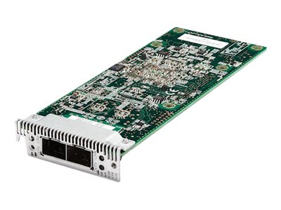 Emulex Dual Port 10 GbE SFP+ Embedded VFA IIIr for IBM System x - network adapter
