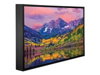 Peerless Xtreme Outdoor Daylight Readable Display CL-49PLC68-OB 49INCH Class LED TV