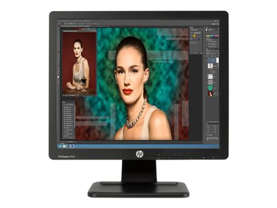 HP ProDisplay P17A LED monitor 17INCH (17INCH viewable) 1280 x 1024 TN 250 cd/m² 1000:1