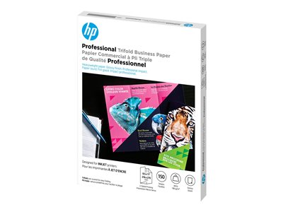 HP Professional Brochure and Flyer