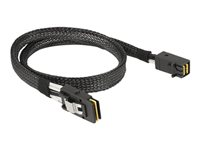 DeLOCK Serial Attached SCSI (SAS) internt kabel 50cm