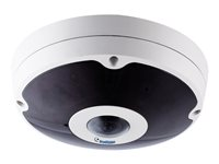 GeoVision GV-FER12203 Network surveillance camera dome outdoor vandal-proof