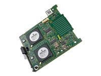 QLogic 5719 Quad Port 1GbE Mezz Card - Netzwerkadapter