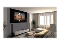 Draper Access MultiView/Series V 16:9 HDTV to 4:3 NTSC Video Projection screen