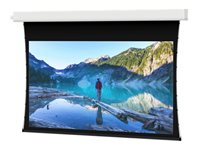 Da-Lite Tensioned Advantage Electrol 16:10 Wide Format Projection screen ceiling mountable