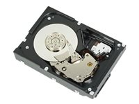 "Dell - Disque dur - 1 To - interne - 3.5"" - SATA 6Gb/s - 7200 tours/min - pour PowerEdge R230, R330, T130, T330, T430"