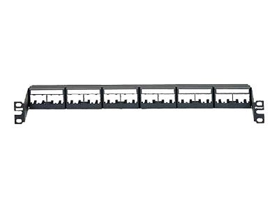 Panduit MINI-COM Modular Faceplate Patch Panels - patch panel - 1U - 19""