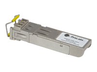 ProLabs J9150A-C - SFP+ transceiver module - 10 Gigabit Ethernet - 10GBase-SR, 10GBase-SW - LC multi-mode - up to 300 m - 850 nm - for Aruba 2930F 24, 2930F 48, 5406; HPE 6120, 6600; ProLiant DL360p Gen8