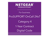 NETGEAR ProSupport OnCall 24x7 Category 4 - Technischer Support