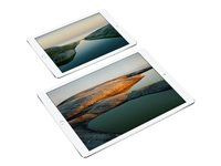 "Apple 12.9-inch iPad Pro Wi-Fi + Cellular - 2nd generation - tablette - 256 Go - 12.9"" IPS (2732 x 2048) - 4G - LTE - argenté(e)"