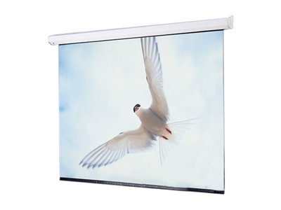 Draper Targa AV Format Projection screen ceiling mountable motorized 110 V