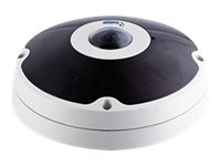 GeoVision GV-FER5700 Network surveillance camera dome outdoor vandal-proof