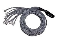 C2G Telco 180 To Hydra - network cable - 3 m - white