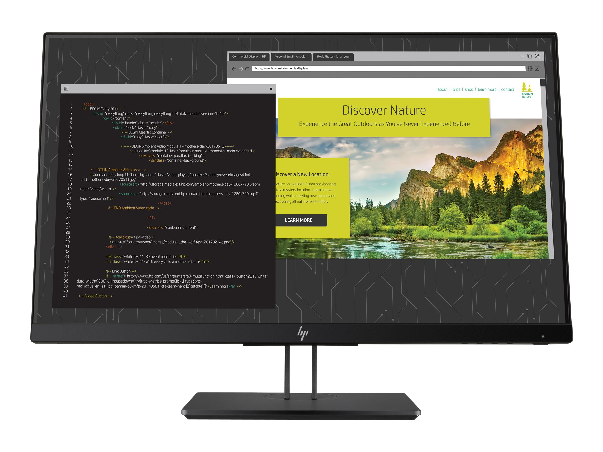 HP Z Display Z24nf G2 - LED-Monitor - 60.5 cm (23.8