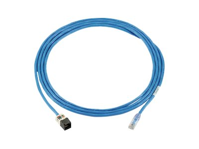 Panduit PanZone patch cable - 19.8 m - blue