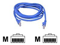 Belkin patch cable - 5.5 m - blue