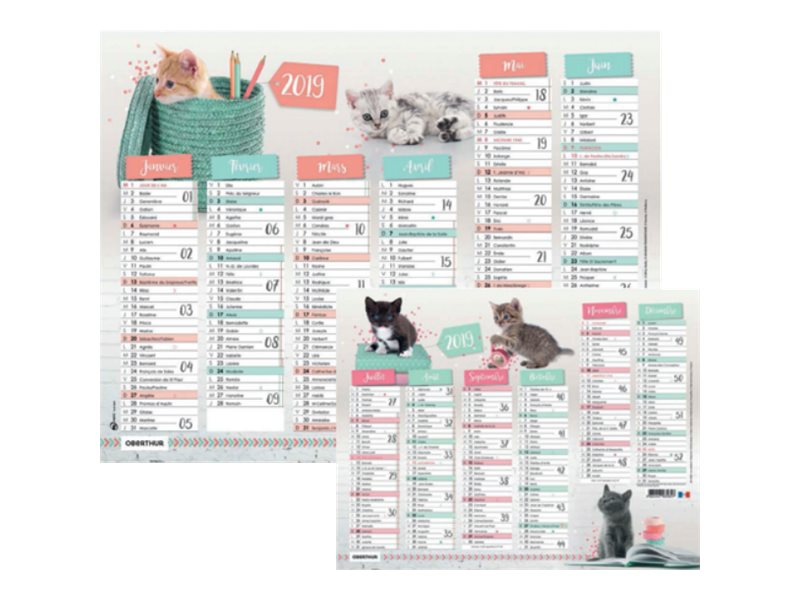 Oberthur Chatons Stars - Calendrier - planning mural - 2017 - 6 mois par face - 270 x 210 mm
