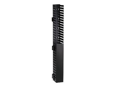 Panduit IN-Cabinet Vertical Cable Managers - rack cable management kit (vertical) - 40U