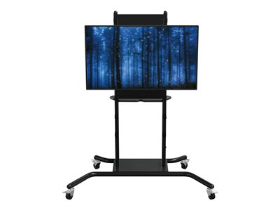 MooreCo iTeach Spider Cart for LCD / plasma panel