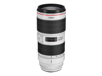 Canon EF - Telephoto zoom lens - 70 mm - 200 mm - f/2.8 L IS III USM - Canon EF - for EOS 1300, 1500, 1D, 2000, 3000, 4000, 5D, 6D, 77, 80, 800, 9000, Kiss X90, Rebel T100