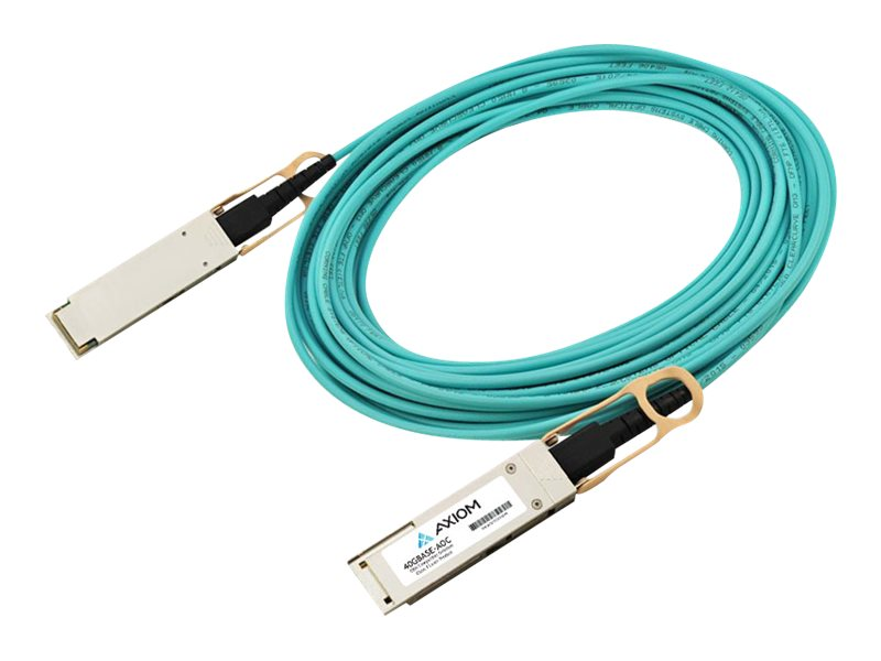 Axiom network cable - 10 m