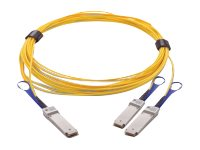 Mellanox LinkX 200Gb/s to 2x100Gb/s Active Splitter Fiber Cable - InfiniBand cable - 5 m