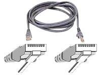 Belkin patch cable - 9.1 m - gray