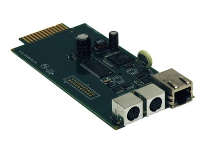 Tripp Lite UPS SNMP / Web Management Accessory Card for SmartPro / SmartOnline UPS Systems - remote management adapter
