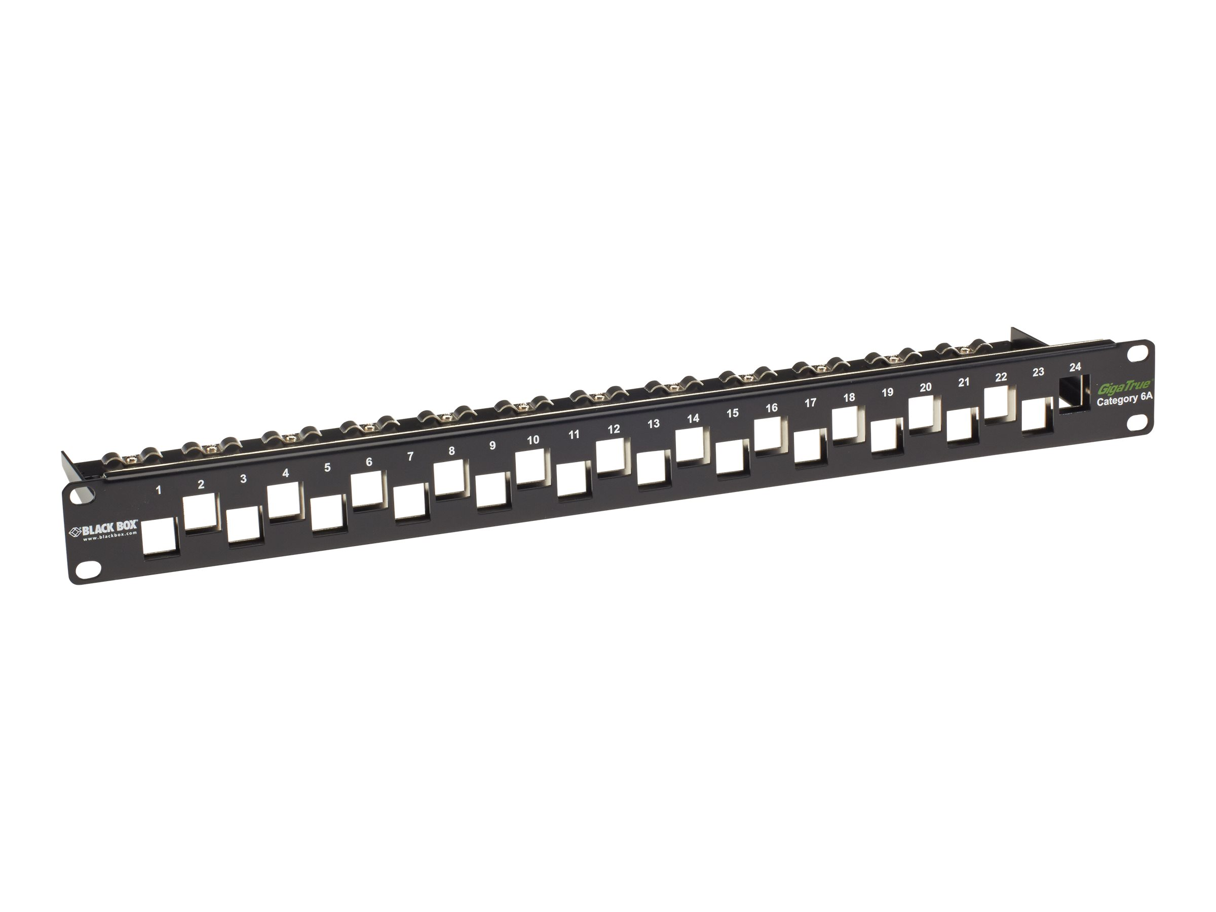 """Black Box GigaTrue CAT6A Staggered Blank Patch Panel - patch panel - 1U - 19"""""""