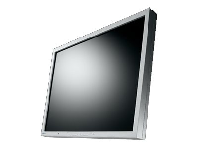 EIZO FlexScan 21 S2133-GY LED-Monitor