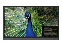 """BenQ RP704K 70"""" Class LED display interactive communication with touchscreen / NFC reader/writer 4K UHD (2160p) 3840 x 2160 D-LED Backlight"""