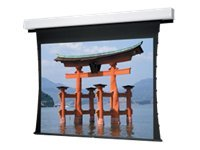 Da-Lite Tensioned Advantage Deluxe Electrol HDTV Format Projection screen 184INCH (183.9 in)