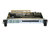 Cisco 24-Port Channelized T1/E1/J1 Circuit Emulation Over Packet and Channelized ATM Shared Port Adapter - expansion mo…