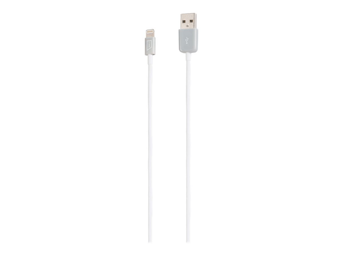 iStore Lightning cable - 50 cm
