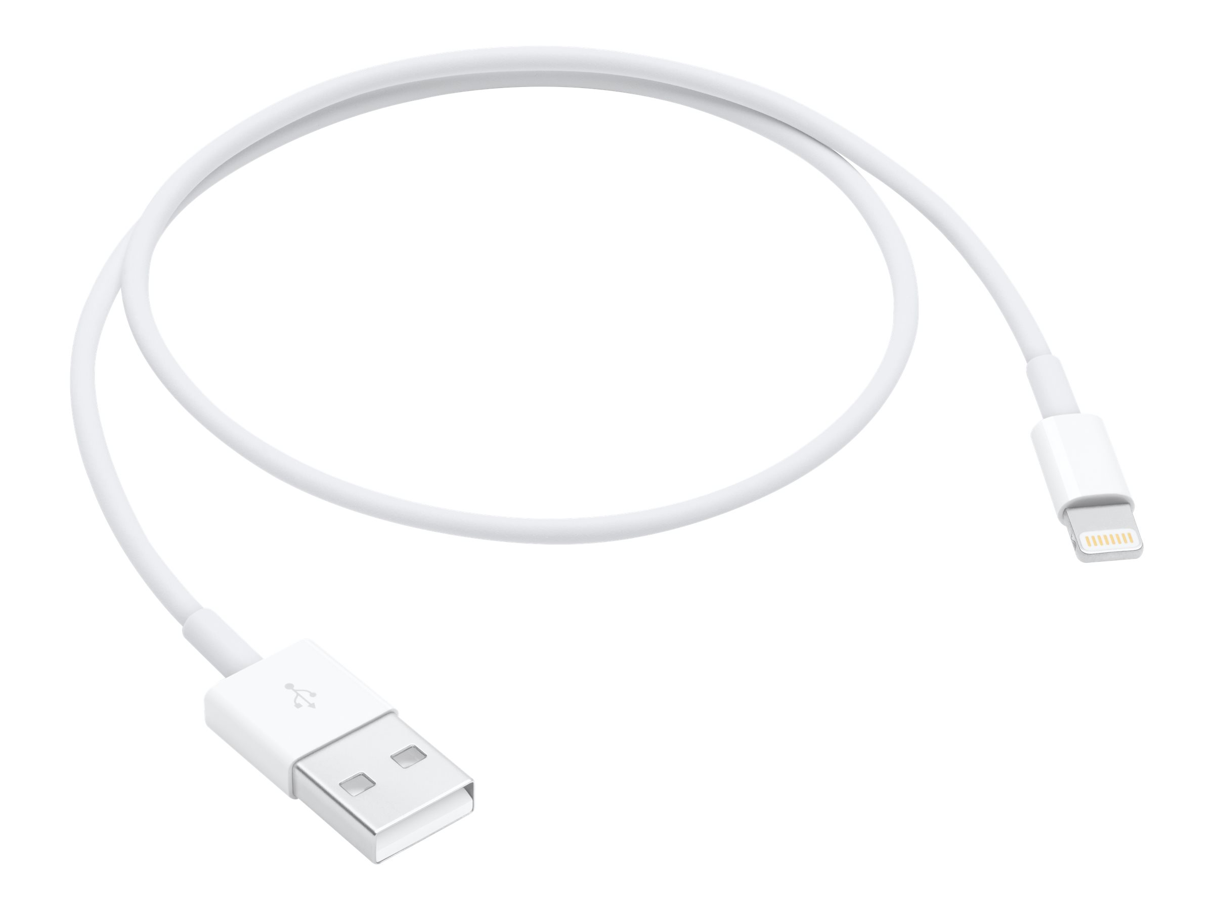 Apple Lightning cable - Lightning / USB 2.0 - 50 cm