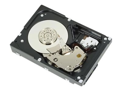 Dell Customer Kit - Festplatte - 300 GB - Hot-Swap - 2.5