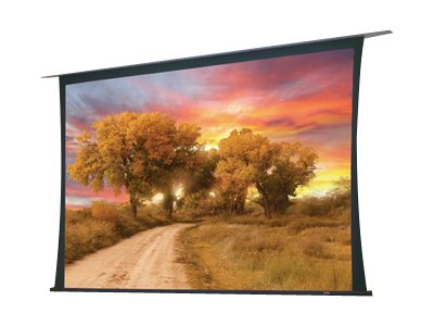 Draper Access/Series V Electric 16:10 Format Projection screen ceiling mountable motorized