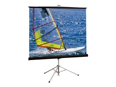 Draper Diplomat/R HDTV Format Projection screen with tripod 76INCH (76 in) 16:9