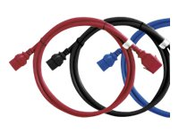 Raritan SecureLock power cable - 60 cm